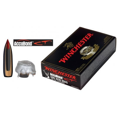 Winchester AccuBond CT Centerfire Rifle Ammunition .300 Win Mag 180 gr AB 2950 fps - 20/box