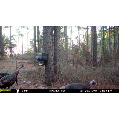 Moultrie Feed Station - 40 lb. Capacity