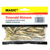 """Magic Products Preserved Baits Emerald Shiner Minnows 1.5 oz Pouch 1-1/2-2"""" - Small Natural"""