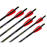 Tenpoint Pro Elite Carbon Arrows - 20""