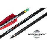 "TenPoint Pro Elite Carbon Arrows with molded ALPHA nocks - 20"" 6/pk"