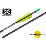 "Ten Point EVO-X CenterPunch Carbon Arrows 20"" with Molded ALPHA Brite Nocks 3/p"