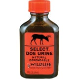 Wildlife Research Select Doe Urine Lure For Non-Rut Hunting 1 FL OZ