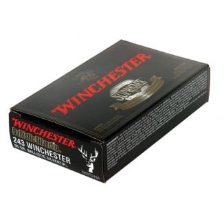 Winchester Ballistic Silvertip Rifle Ammunition .243 Win 95 gr BST 3100 fps - 20/box
