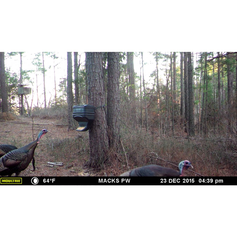 on new to fishingbuddy hunting feeder deer age hoof score agescore moultrie