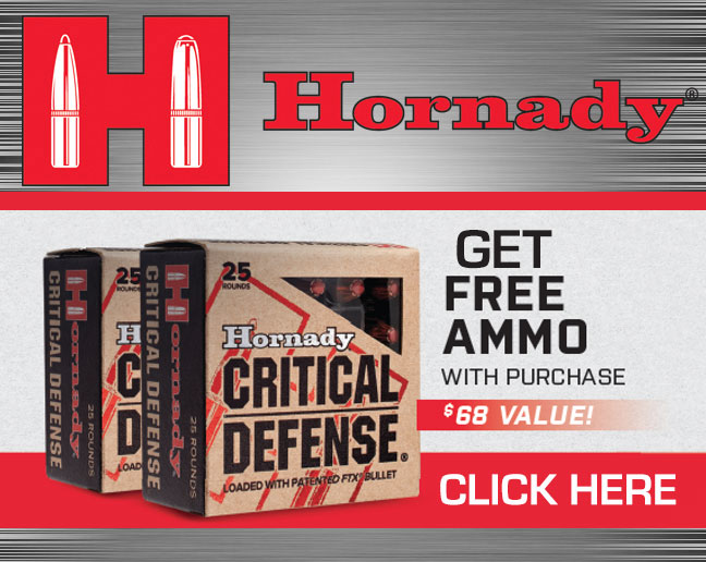Hornady Safe and Secure