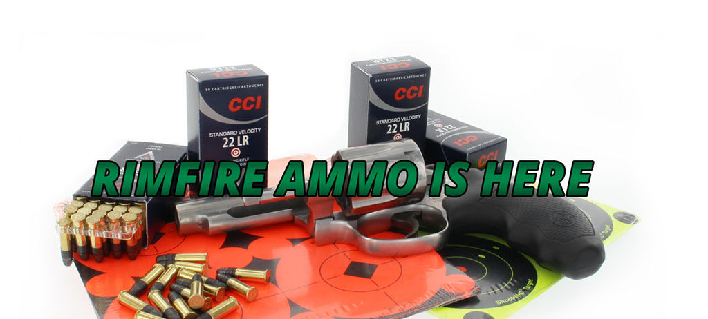 Rimfire ammo for summer plinking